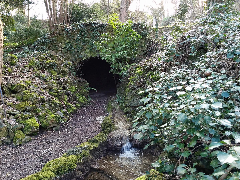 Jardin biodiversit for Jardins remarquables ile de france