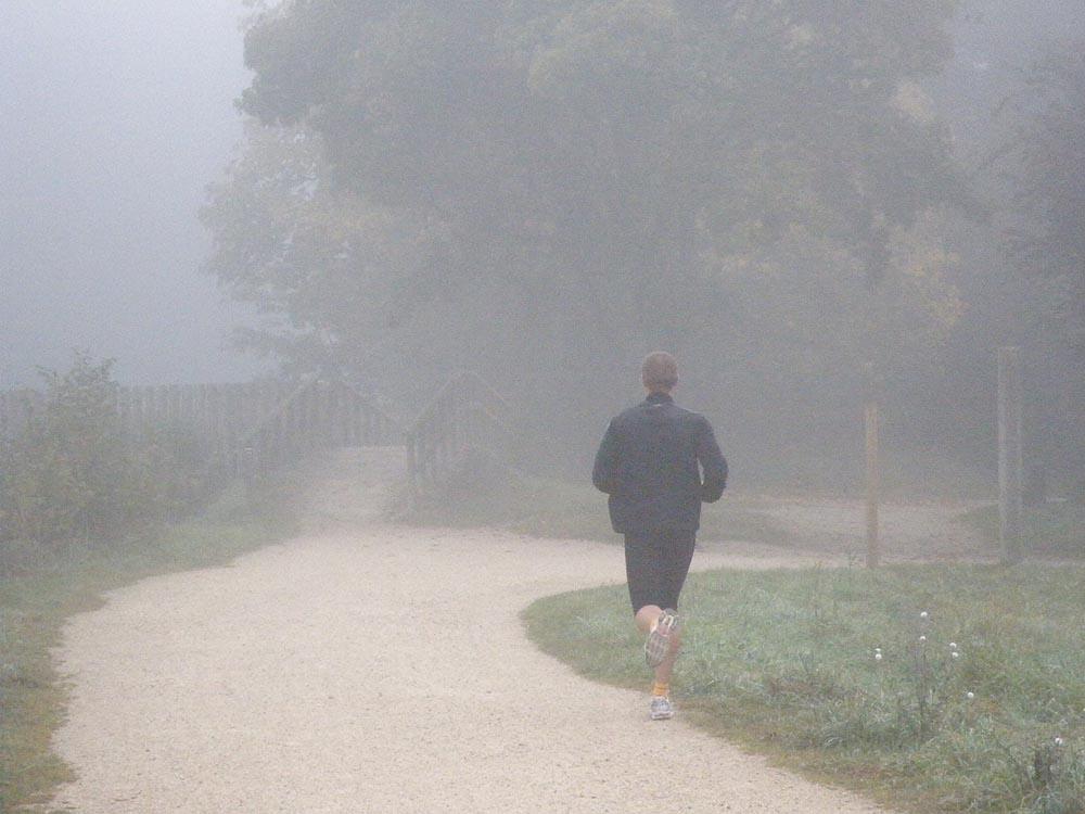 Speedy Sainte Geneviève Des Bois - Brouillard