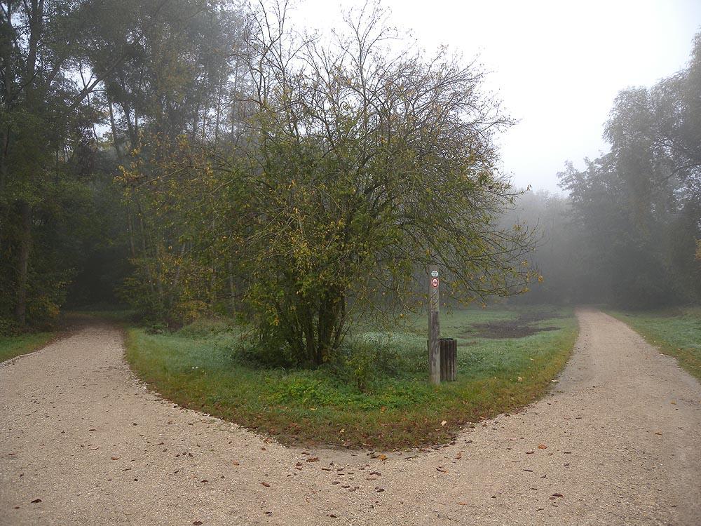 Brouillard - Bureau vallee st genevieve bois ...
